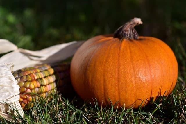 halloween origin